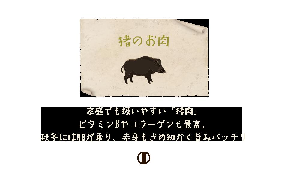 sisi_bnr